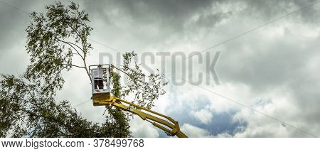 Arborist Man In The Air, Cloudy Stormy Sky, On Yellow Elevator, Basket With Controls, Cutting Off De