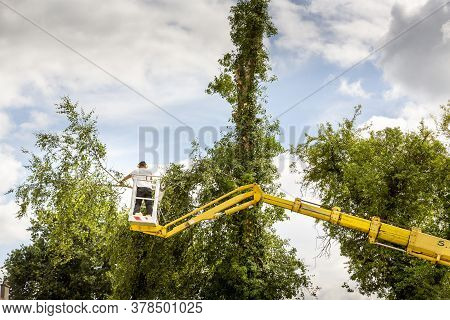 Arborist Man In The Air, Cloudy Sky, On Yellow Elevator, Basket With Controls, Cutting Off Dead Cher