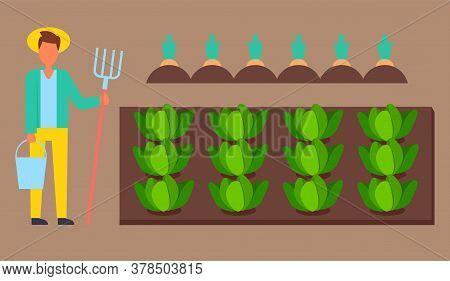 Young Man Gardener In Uniform Holding Bucket And Rake In Hands Standing Near Garden Bed With Growing