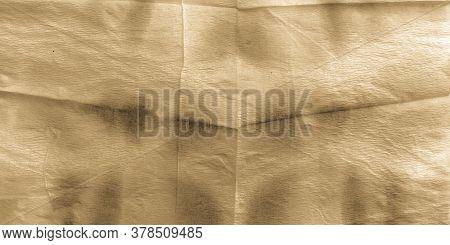 Ripped Parchment. Beige Shibori Print. Craft Structure Shibori Pattern. Beige Ivory. Craft Ink Ornam