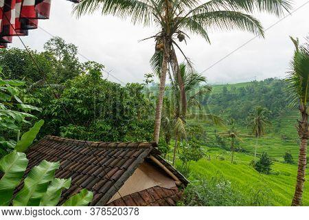 Jatiluwih, Bali Indonesia - April 22, 2013: View Of Jatiluwih Mountain Region Of Bali Island. The Pl