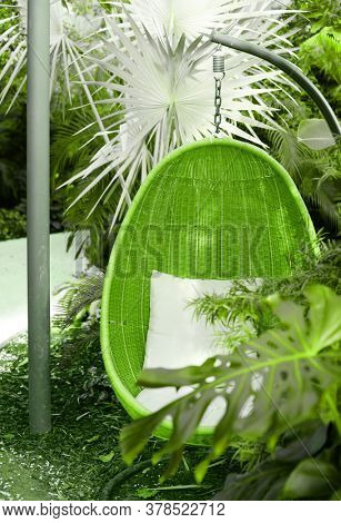 Rattan oval hanging chair witht pillow in tropical plant. Green vertical background.