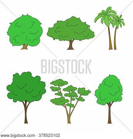 Set Of Different Trees. Oak, Aspen, Alder, Poplar, Chestnut, Palm. Vector Illustration.