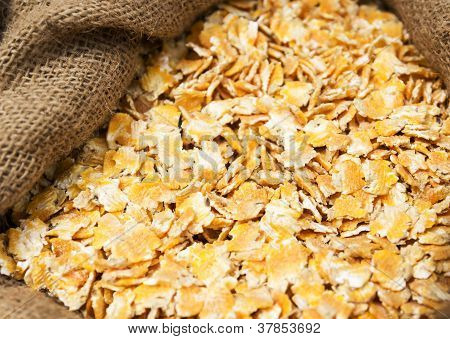 Compound Animal Feed