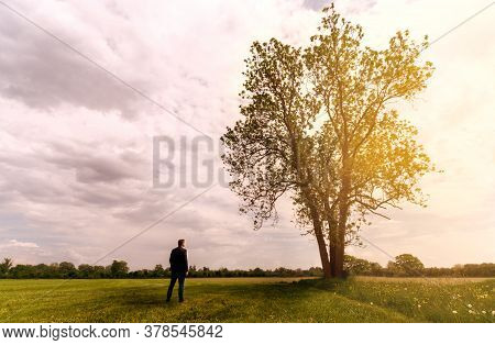 Businessman Stands In Front Of A Tree At Sunset And Draws New Vitality And Hope Outdoor