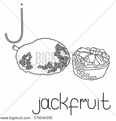 Coloring Page Fruit And Vegetable Abc, Letter J - Jackfruit, Educated Coloring Card For Creativity