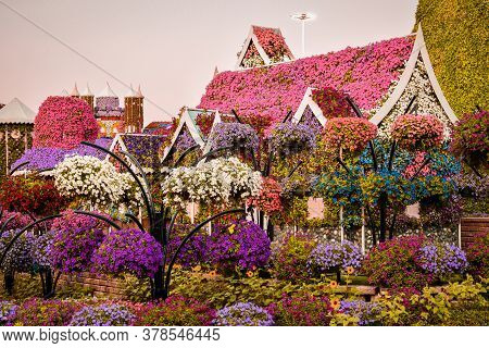 Flower Arrangement Of Petunias In The Form Of A House. Miracle Garden. Dubai. Emirates. November 201