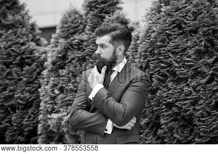 Time For Thought. Business Man Bearded Wear Fashionable Suit. Successful Entrepreneur. Business Life