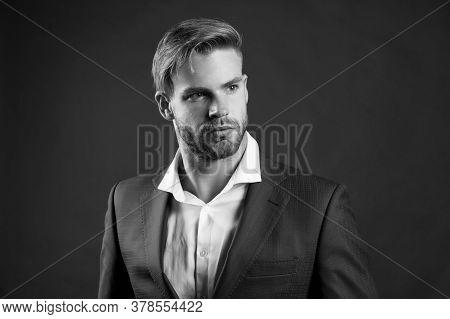 Fancy Groom. Fashionable Successful Businessman. Businessman Handsome Attractive Office Worker. Man