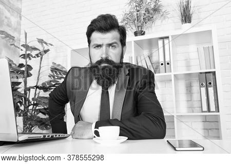 So Confident. Brutal Look Of Hipster Man. Hipster Sit At Work Desk. Businessman Wear Hipster Beard.