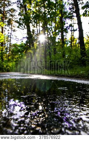 Landscape Of The Forest Road With Sunlight And Reflection Of Trees In Puddle, Wet Road With Water Pu