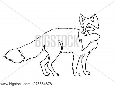 Continuous One Line Drawing Fox. Continuous Black Outline Drawing On White Background. Logo Of The F