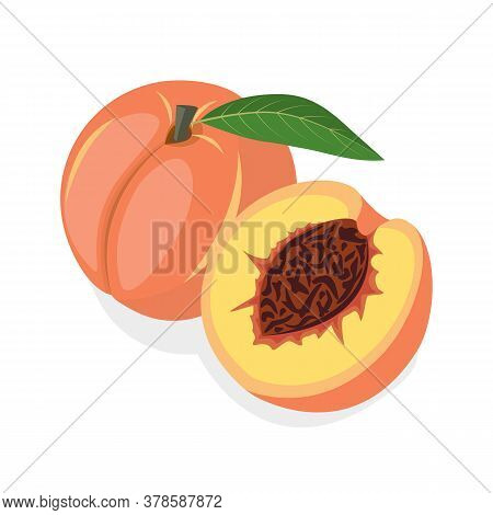 Fresh Peach On A White Background. Half Peach Of Delicious Sweet Fruit. Can Be Used As Emblem, Logo,