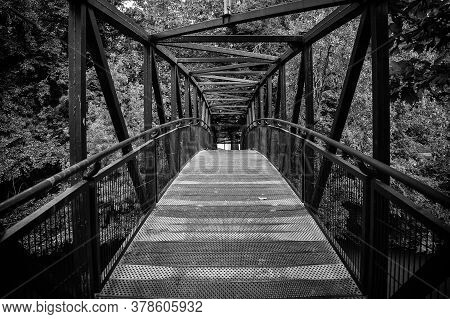 Metal Walkway In A Forest