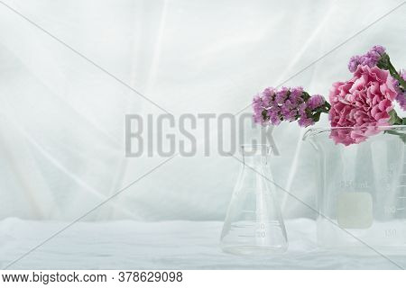 Purple Pink Natural Flower With Science Glass Flask Beaker In White Cosmetic Laboratory Background