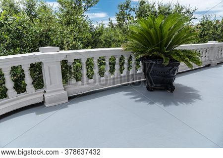 Large Vintage Planter With Potted Palm Plant On A Sunny Balcony With Low Balustrade, Creative Copy S