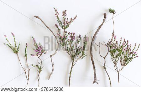 Styled Stock Photo. Autumn Feminine Scene, Floral Composition. Decorative Banner, Corner Made Of Hea