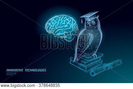 Owl Bird Symbol Of Wise Education. E-learning Distance Concept. Graduate Certificate Program Concept