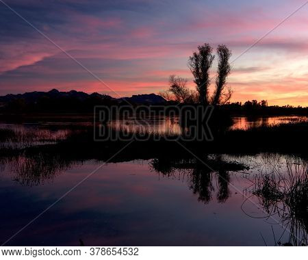 Sunset At The Gray Lodge Wildlife Area, Pennington, California, Usa,  Featuring Orange And Pink Colo