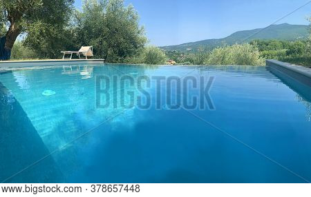 swimming pool landscape within an olive grove