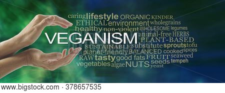 The Basics Of Veganism Word Cloud - Female Hands Cupped Around The Word Veganism Surrounded By A Veg