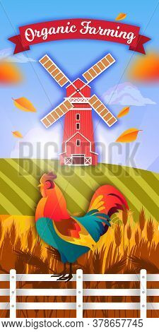 Organic Farm Illustration With Windmill, Cock, Fence, Fields Of Wheat And Barley, Leaves, Clouds. Ag