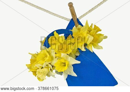 Yellow Daffodil Bouquet In Blue Bag Hanging From Clothesline With Retro Wooden Clothespin