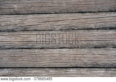 The Background Is Made Of Old Thin Wooden Logs Of A Grayish Shade, With A Lot Of Longitudinal Cracks