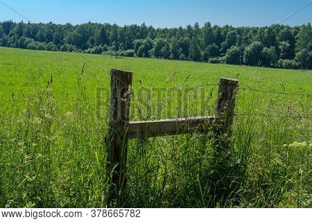 A Fence Made Of Logs And Barbed Wire For Livestock In A Pasture With Green Grass Surrounded By Fores