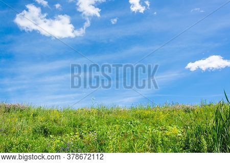 Green Meadow With Lush Grass And Blue Sky With Clouds On A Sunny Summer Day. Local Travel