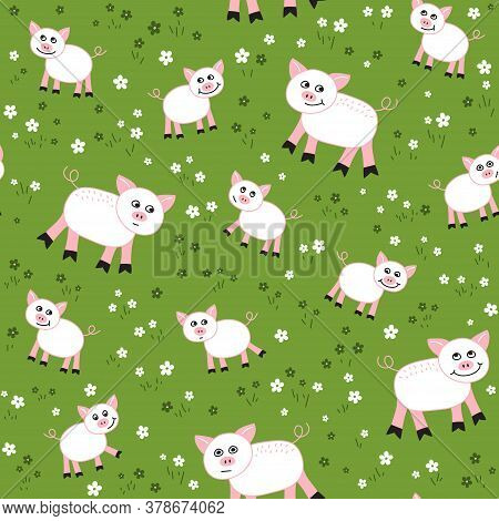 Vector Seamless Pattern With Pigs  In  The Meadow. Loop Pattern For Fabric, Textile, Posters, Gift W