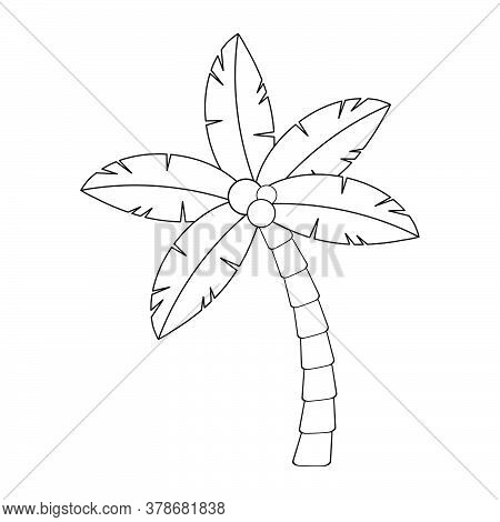 Palmtree Outline Contour Isolated On White. Hawaiian Palm Tree Illustration. Tropic Coco Frond Shape