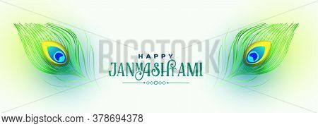 Happy Krishna Janmashtami Peacock Feather Banner Design