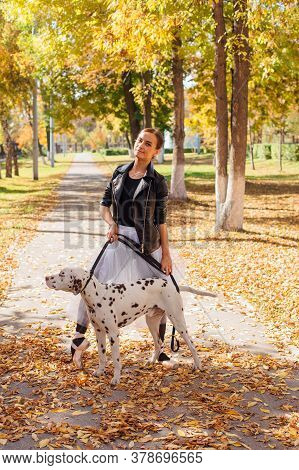 Ballerina With Dalmatian Dog In The Park. Woman Ballerina In A White Ballet Skirt And Black Leather