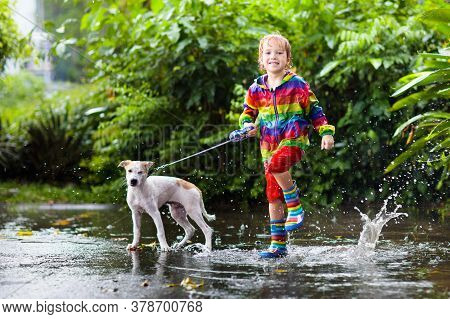 Kid And Dog Playing In The Rain In Autumn Park. Child Walking Puppy. Little Boy Jumping In Muddy Pud