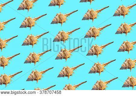 Blue Thorn Conch Seashel Pattern Wallpaper Horizontal