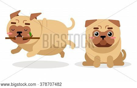 Cute Pug Running With Stick And Sitting Vector Set