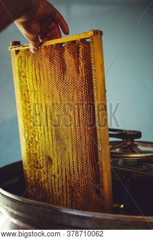 The Beekeeper Puts The Honeycomb Into The Honey Extractor. Apiculture.