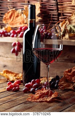 Glass And Bottle Of Red Wine With Grapes. Wine, Grapes And Dried Up Vine Leaves On A Old Wooden Tabl