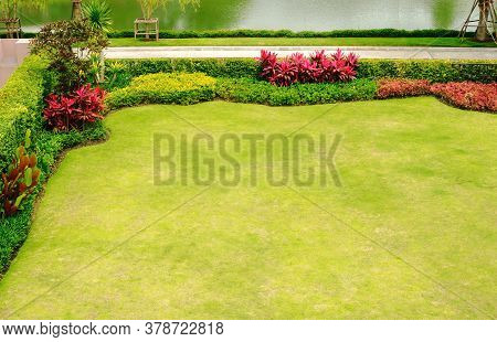 Field Of Green Grass, Green Lawn, Garden On The Front Lawn Decking, Landscape Formal Front Yard Has