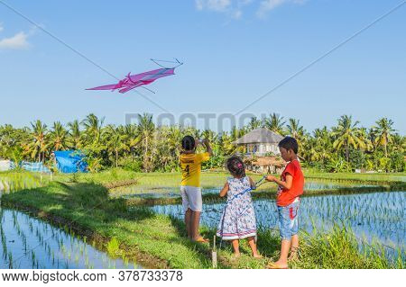 Bali, Indonesia - September 17, 2019: Kids launch a kite in a rice field in Ubud, Bali Island, Indonesia
