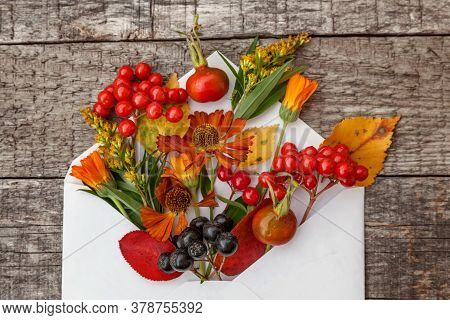 Autumn Floral Composition. Plants Viburnum Rowan Berries Dogrose Fresh Flowers Colorful Leaves In Ma