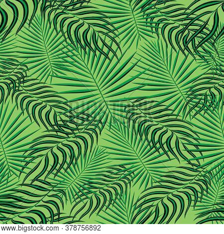 Tropical Palm Leaves Pattern Seamless Background. Exotic Floral Fashion Foliage Art Pattern. Seamles