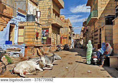 Daily life of Indian old town Jaisalmer. People and cows on the streets. Rajastan Feb 2013. India