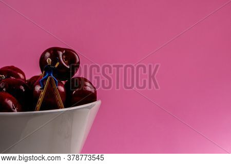 Collection Of Many Cherries In White Ceramic Bowls On Pink Background Isolated With A Lot Of Copy Sp