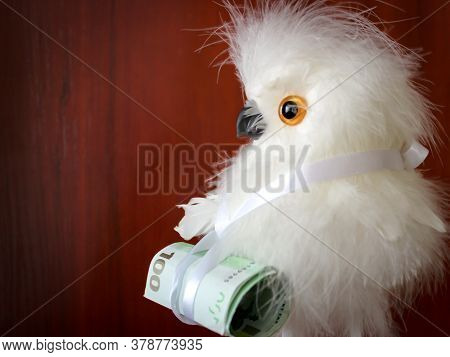 A  Toy In Birds Form And A Few Real Euro Bills Tied To It.