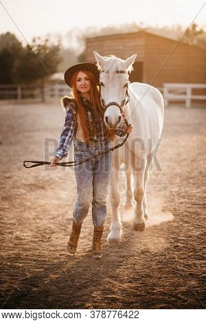 A Young Woman Farmer Leads A Horse In A Corral On A Ranch At Sunset In The Backlight. Full-length Po