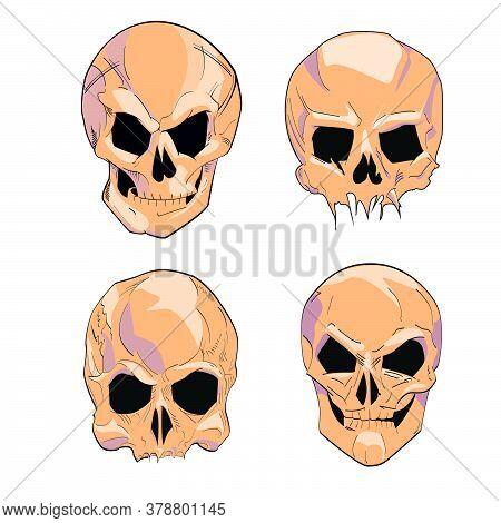 Vector Illustration Group Of Human Skulls. Human Skull Design For Characters.