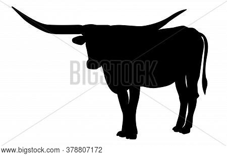 Texas Longhorn Bull, Cattle Icon, On White Background. Vector Illustrations.