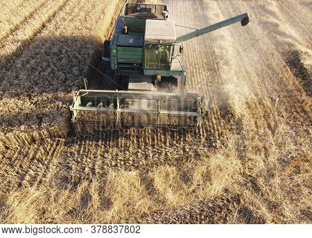 A Combine Harvester Gathers Grain In The Field. Autumn Harvest, Wheat Harvest.